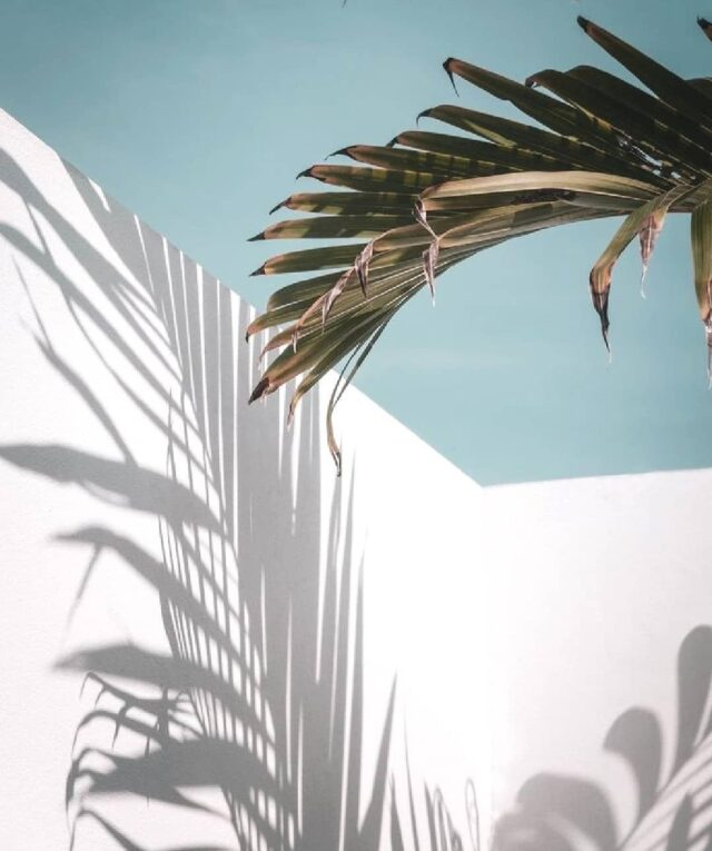 #inspo ☀️ • • • • • • #aestheticlypleasing #postitforaesthetic #beigeaesthetic #minimalstyle #balticbeach #neutrals #tenuedujour #neutralstyle #neutralshades #neutralpalette #neutrals #simpleandpure #simplebeyond #vintageaesthetic #beachvibes #sea #tumblr #baltic #beach #summertime #girl #satinskirt #lovesea #beachtime #summermood #picnic #mybeigelife #parisiangirl #beigepalette