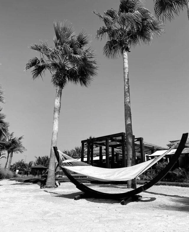 Perfect holiday spot🖤 Inspo by kristina_gwiazda_ • • • • • • #inspo #blackandwhitephotography  #aestheticlypleasing #minimalstyle #neutrals #neutralstyle #neutralshades #neutralpalette #neutrals #simpleandpure #simplebeyond  #beachvibes #tumblr #beach #summertime  #lovesea #beachtime #palmtrees